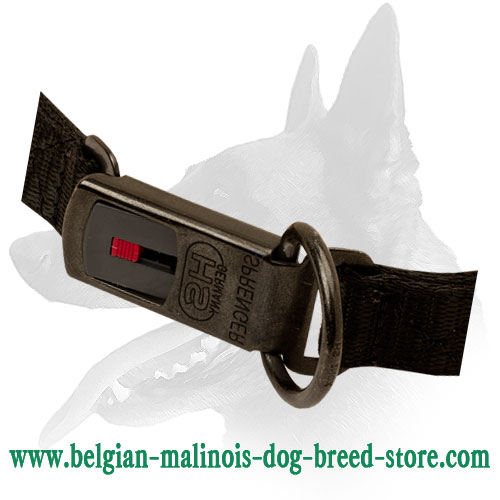 Click Lock Buckle on Belgian Malinois Pinch Collar