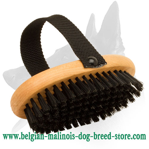 Wooden Bristle Brush for Belgian Malinois