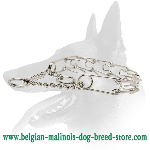 Strong Dog Collar for Belgian Malinois