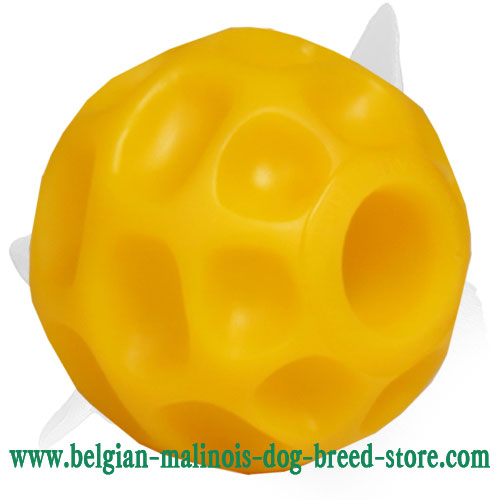 Safe for Health Belgian Malinois Ball