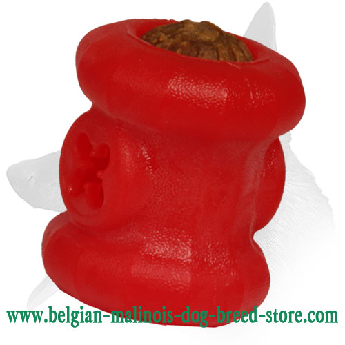 Safe Belgian Malinois Foam Dog Item