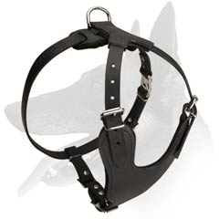 Multipurpose Belgian Malinois Harness