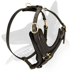 High-quality Malinois Leather Harness