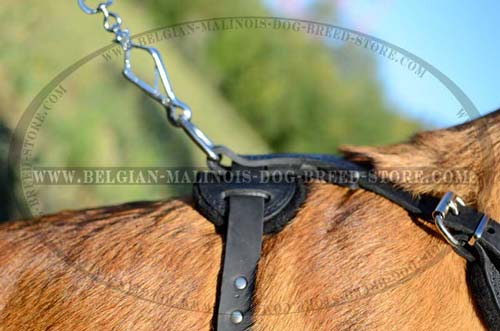 Quality Belgian Malinois Dog Leather Harness