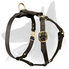 Belgian Malinois Dog Harness with brass hardware