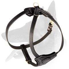 Comfy Leather Harness