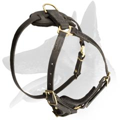 Padded Leather Harness