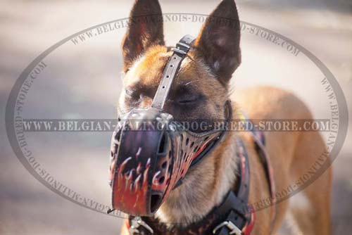 Malinois Decorated Leather Harness