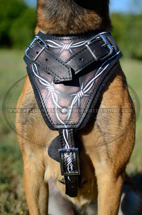 Painted Malinois Leather Harness