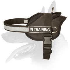 Belgian Malinois harness nylon wide straps