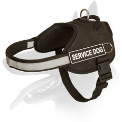 Belgian Malinois harness nylon with easy quick release buckle