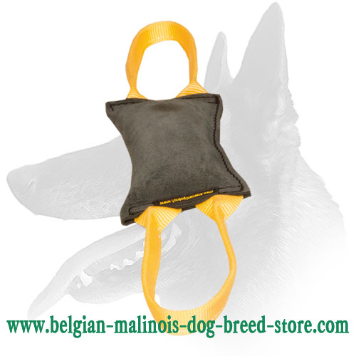 'Firm Bite' Belgian Malinois Leather Tug for Young Dog Training