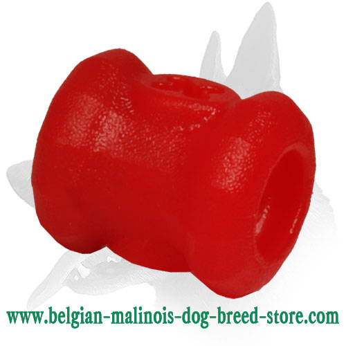'Dog's Must-Have' Belgian Malinois Small Chewing Toy