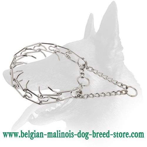 """Calm Down Effect"" Belgian Malinois Pinch Collar"