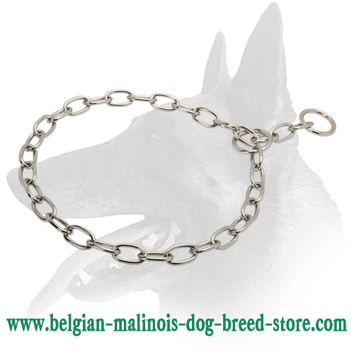 Belgian Malinois Chrome Plated Fur Saver Dog Collar for Daily Training