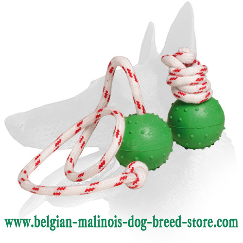 'Play and Train' Belgian Malinois Rubber Ball