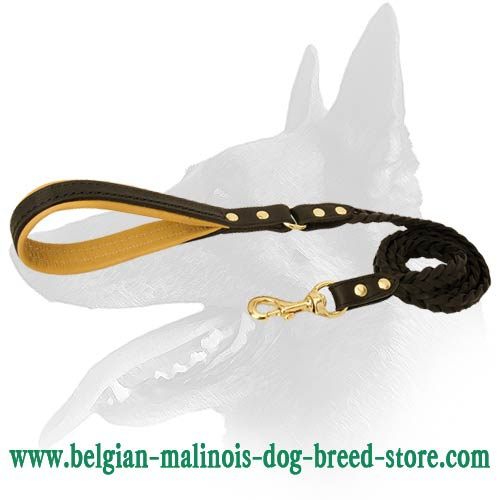 Cool Braided Leather Leash for Belgian Malinois