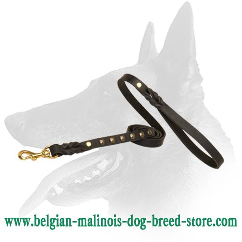 Leather Leash with studs for Belgian Malinois