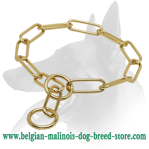 """Chain Trainer"" Belgian Malinois Fur Saver Dog Collar Made of Brass"
