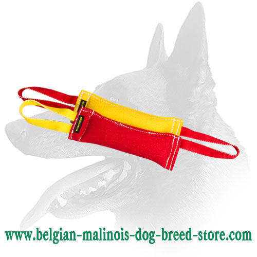 Belgian Malinois Set of 2 Puppy Tugs Made of French Linen
