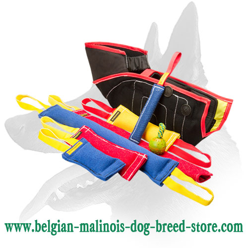 Buy this Great Belgian Malinois Bite Training Set and Get $36.70 Value Presents