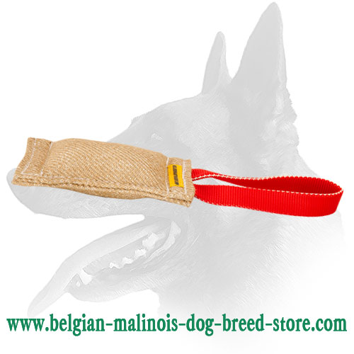 Belgian Malinois Jute Puppy Bite Tug with One Handle