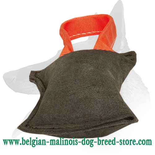 Excellent Drive and Retrieve Building Tool -Belgian Malinois Leather Bite Tug