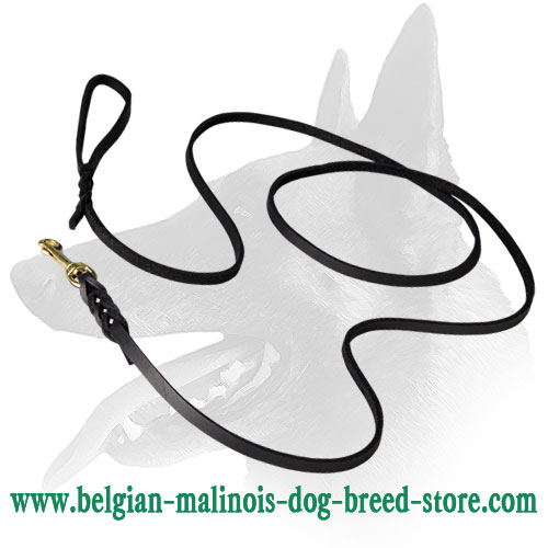 Belgian Malinois High Quality Show Leather Dog Leash