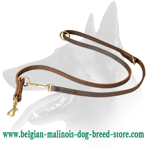 Belgian Malinois Leather Dog Leash for Active Training