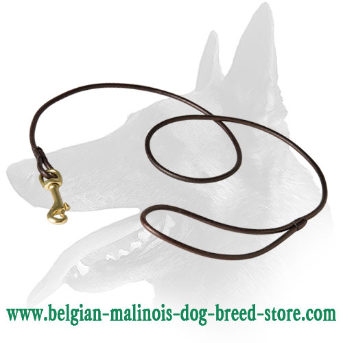 'Like a Star' Belgian Malinois Leather Leash for Dog Shows
