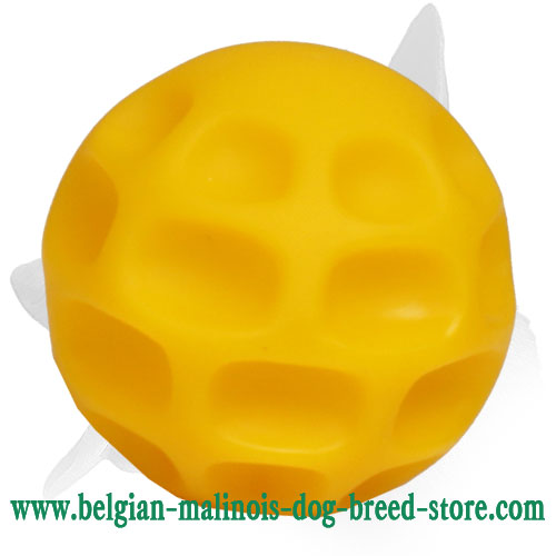 'Best Bite' Belgian Malinois Small Tetraflex Dog Ball
