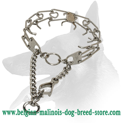 Belgian Malinois Dog Pinch Collar with Swivel and Small Quick Release Snap Hook