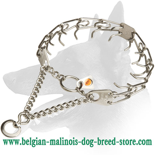 New Belgian Malinois Stainless Steel Dog Pinch Collar