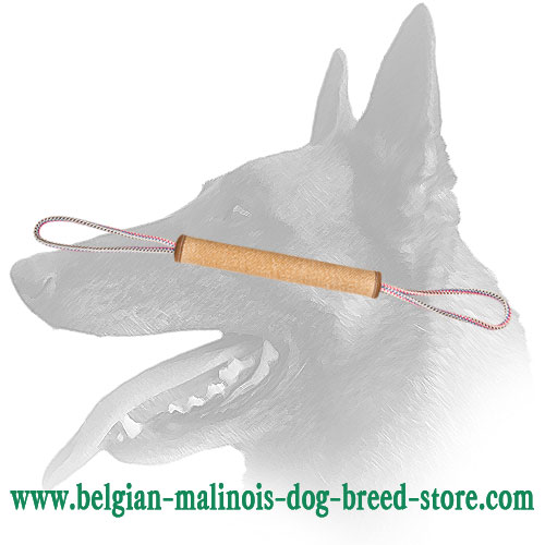 Belgian Malinois Training Play Roll Made of Jute