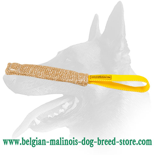 Belgian Malinois Puppy Jute Bite Tug with Comfortable Loop