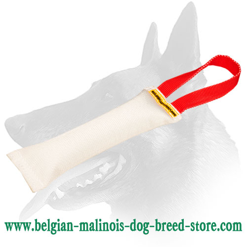 Belgian Malinois Training Fire Hose Bite Tug With Handle