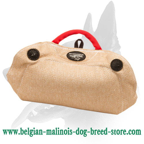 New 2015 Belgian Malinois Puppy and Young Dog Bite Builder Made of Jute 30% DISCOUNT