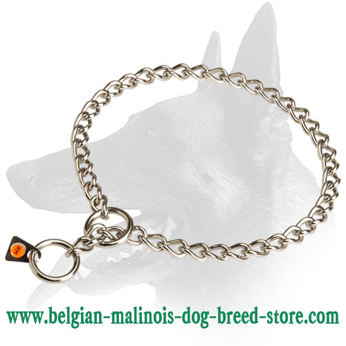 Belgian Malinois Stainless Steel Choke Dog Collar with Quality Label
