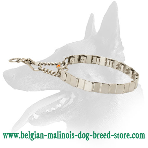 'Perfect Behavior' Belgian Malinois Stainless Steel Dog Pinch Collar