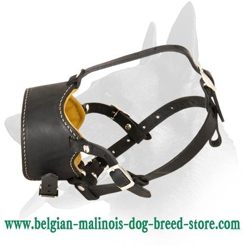 Handmade Leather Muzzle for Belgian Malinois