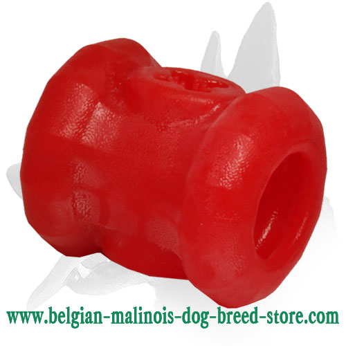 'Yammy Bobbin' Belgian Malinois Chewing Toy