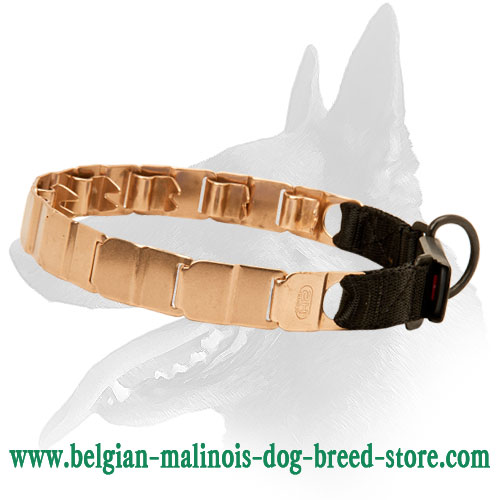 Belgian Malinois Curogan Neck Tech Dog Collar with Click Lock Buckle