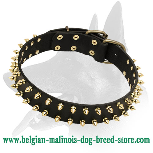 "Belgian Malinois ""Unveiled Luxury"" Leather Dog Collar for Walking"