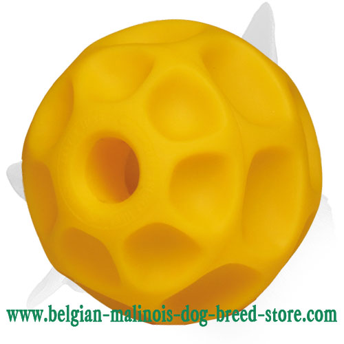 'Honeycomb' Belgian Malinois Large Tetraflex Chewing Ball