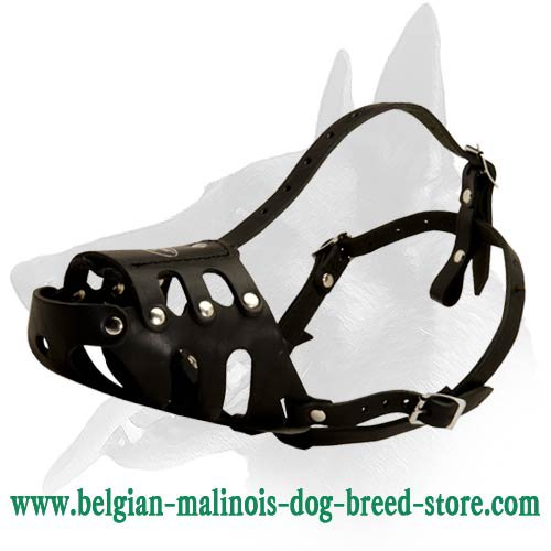 Tight-fitting Leather Muzzle for Belgian Malinois