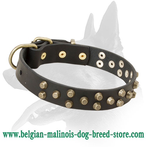 "Belgian Malinois Leather Dog Collar with Brass Pyramids - ""Galaxy Trip"""