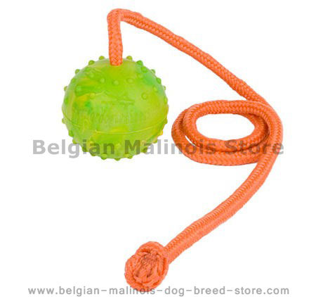 K9 Ball with Rope-Activity Dog Toy for Belgian Malinois