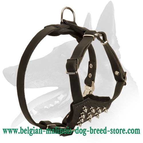 'Full Control' Strong and Stylish Belgian Malinois Puppy Harness