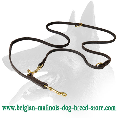 Soft and Gentle Belgian Malinois Dog Leash