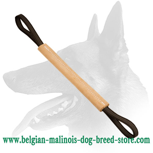 Belgian Malinois Hard pocket Bite Roll Made of Leather with Handles